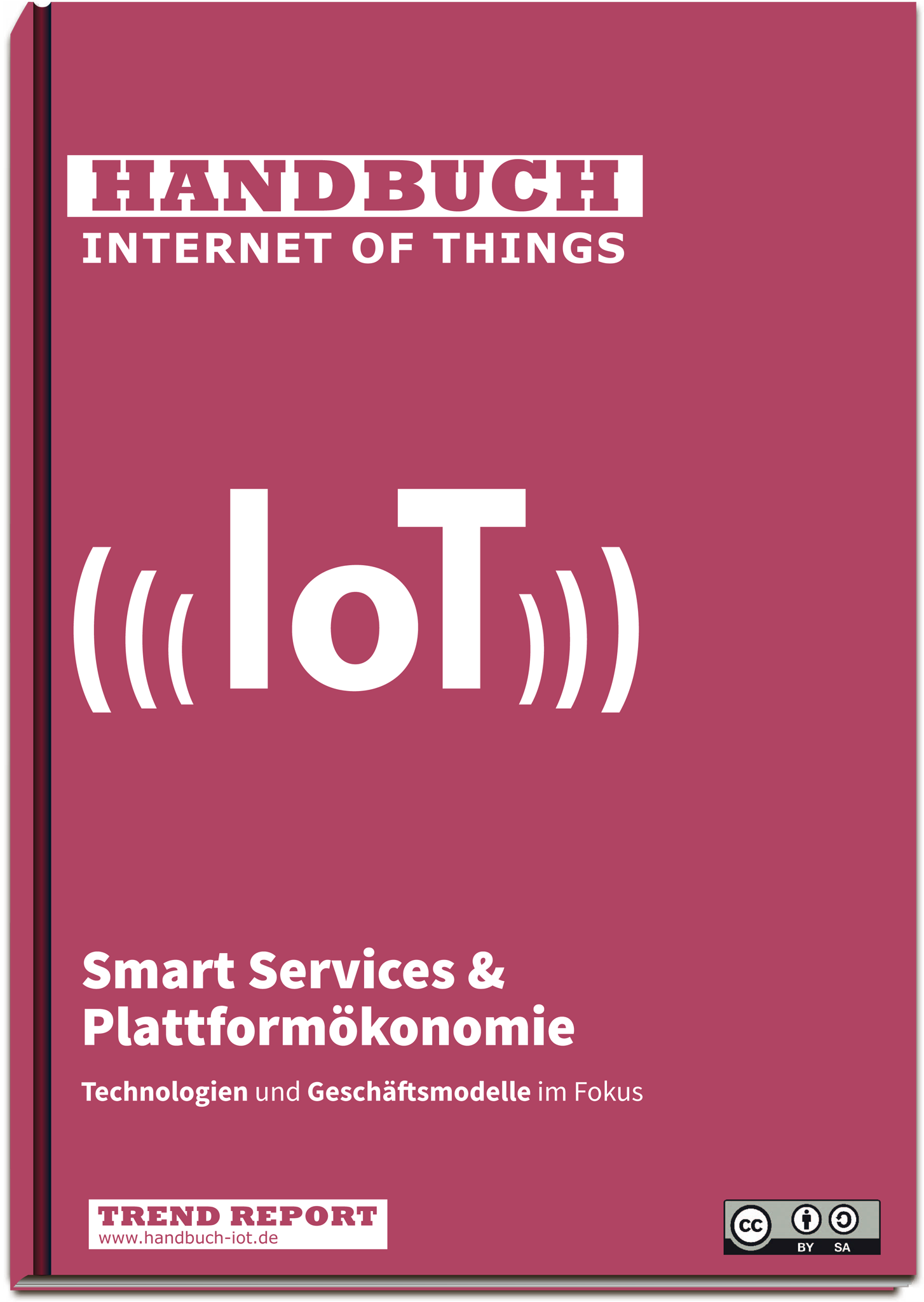 Cover Handbuch IoT